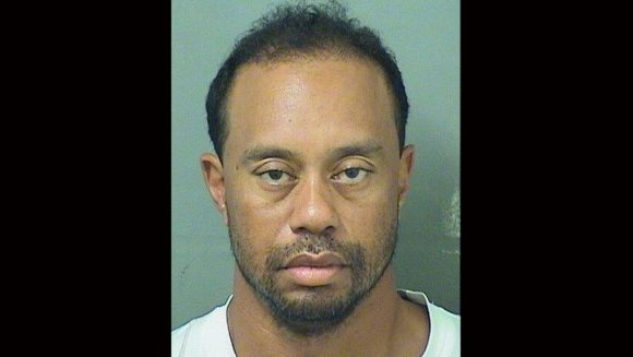 Tiger Woods was asleep at wheel, police say